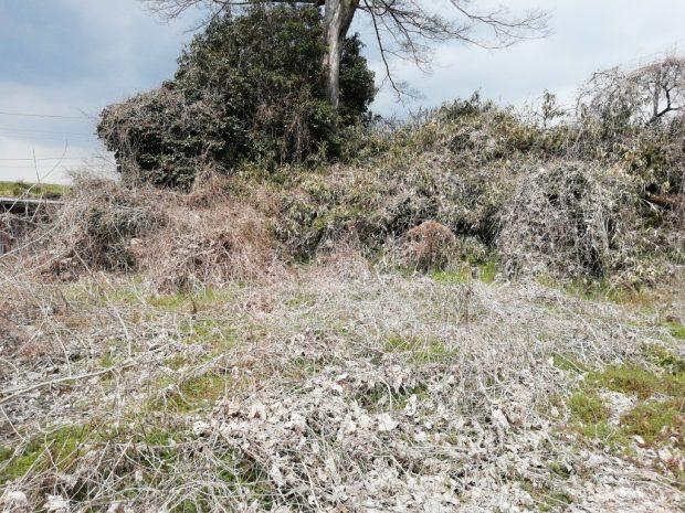 【桜井市】雑草・ツルの除草 お客様の声