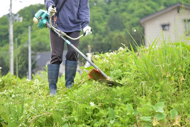 奈良市で草刈りに最適な年3回の時期~楽に草刈りを終えるコツまで徹底解説
